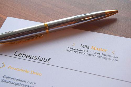 Taller CV en Suiza